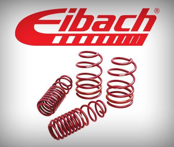 Arcuri sport Seat Leon 1P Eibach Sportline